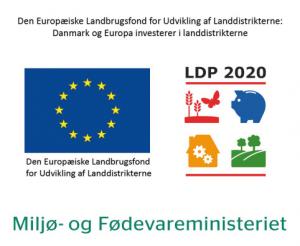 LDP 2020